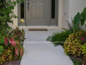 Front Entrance - mlm c@